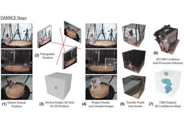 動物動画のデータから3Dモデルを生成するAI:月刊エンタメAIニュース vol.17